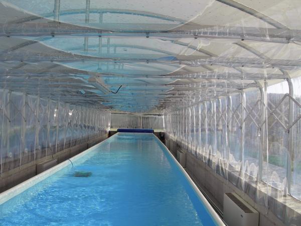 Il Copripiscina è una rivoluzionaria copertura estensibile per piscine estremamente funzionale sia come riparo da polvere e sporco, sia come copertura invernale.