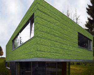 Edithabitat il portale dell 39 habitat - Prato verticale per interni ...