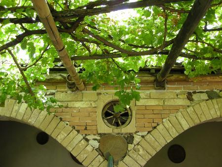 Distinzione tettoia e pergolato, cosa � soggetto a sanatoria?
