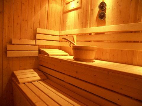 La sauna in casa. Progettazione, materiali e costi